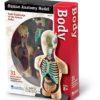 Комплекти таблиць Система органів тіла людини - Тіло – анатомія людини